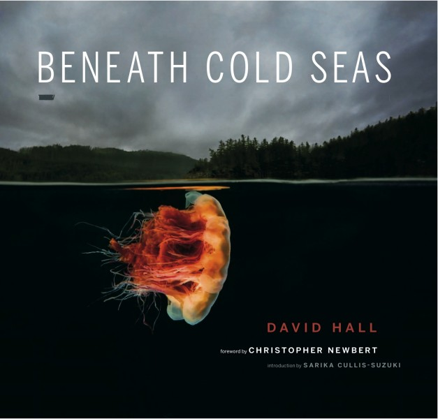 Beneath Cold Seas cover image