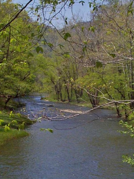 Springtime on Bluestone National Scenic River