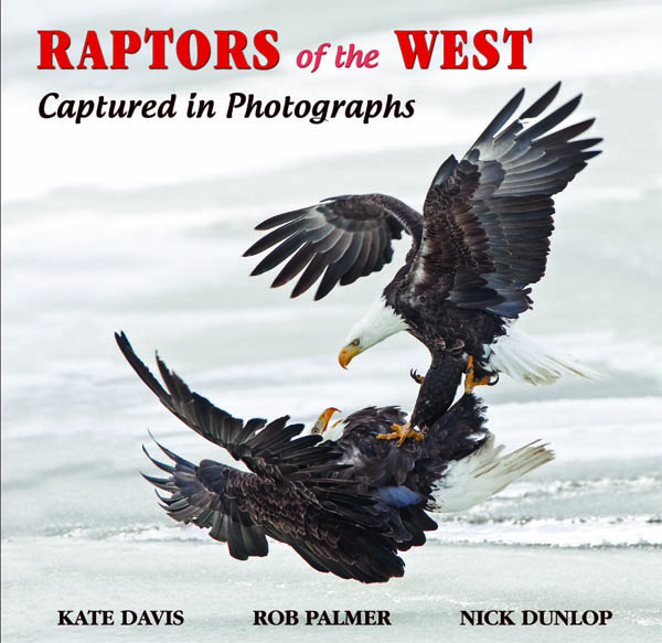 Raptors of the West cover