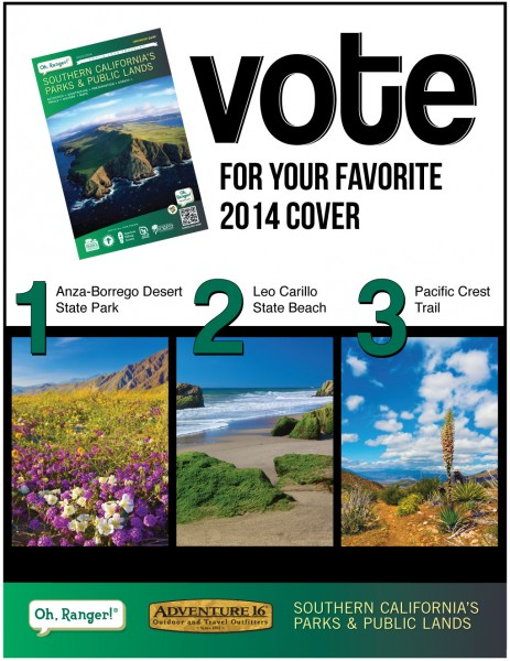 Vote for your favorite cover.