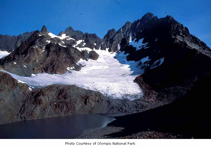 Olympic National Park Glacier