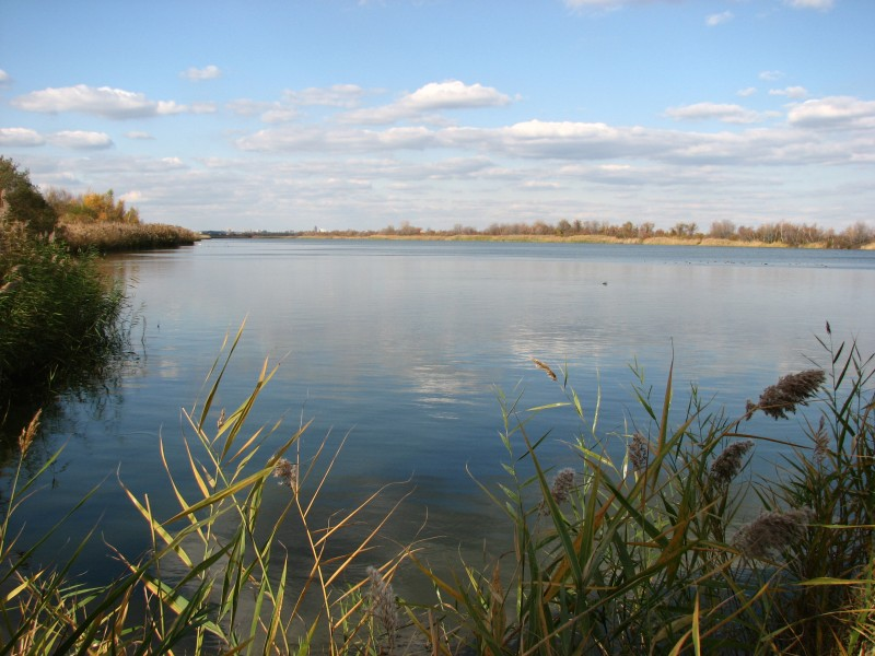 Jamaica Bay Wildlife Refuge, New York