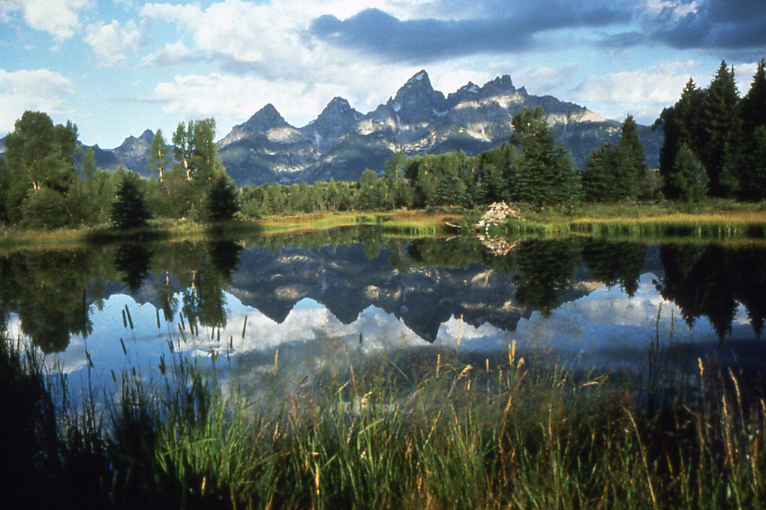 Schwabachers Landing, Grand Teton National Park. Photo Credit: National Park Service
