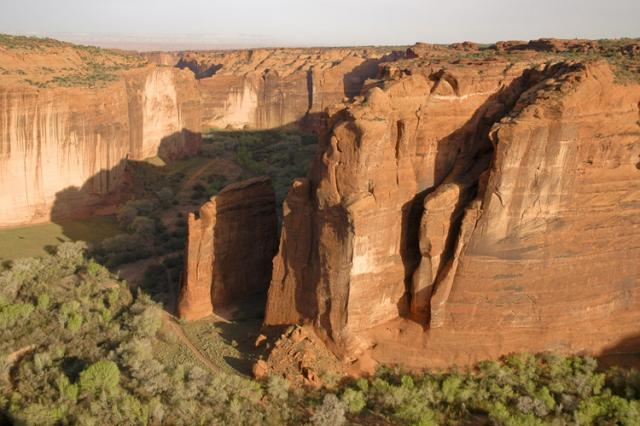 Canyon, Trees, and Cliffs