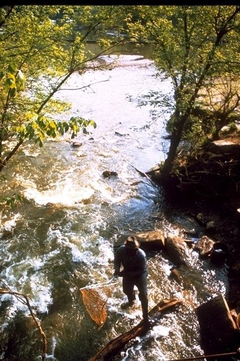 Chesapeake & Ohio Canal, 2500