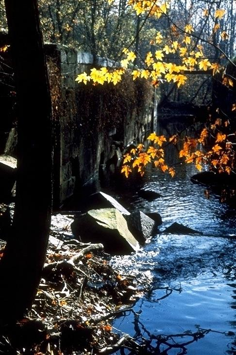 Chesapeake & Ohio Canal, 2643