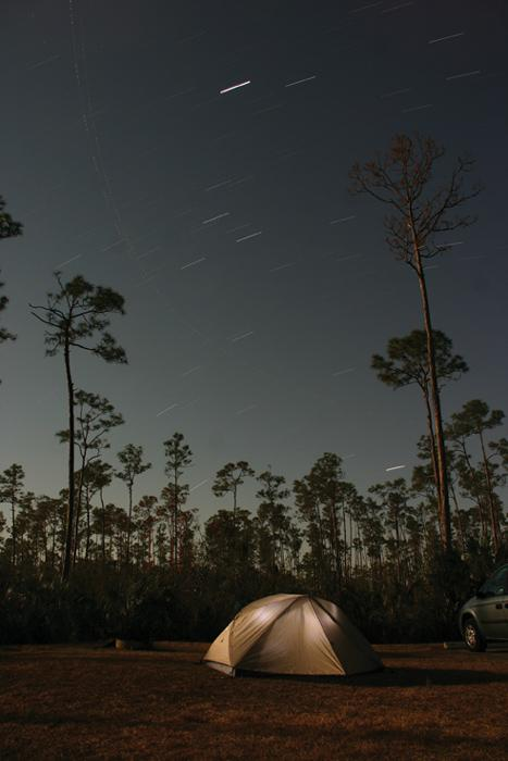 Star movements across night sky with tent and slash pine tree silhouettes, Everglades National Park Pinelands, Florida