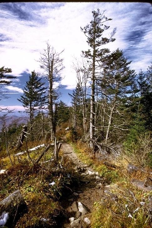 Smoky Mountains, 1021