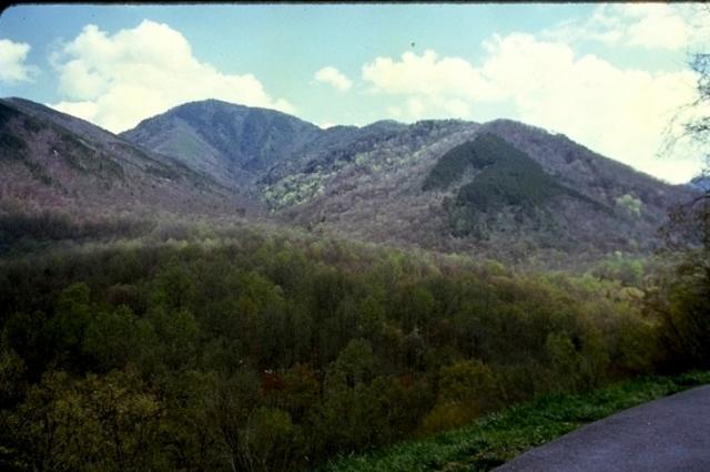 Smoky Mountains, 8832
