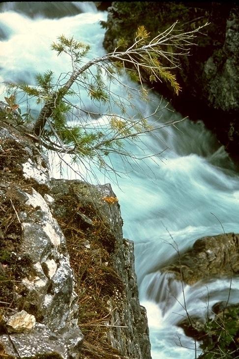 North Cascades, 8009