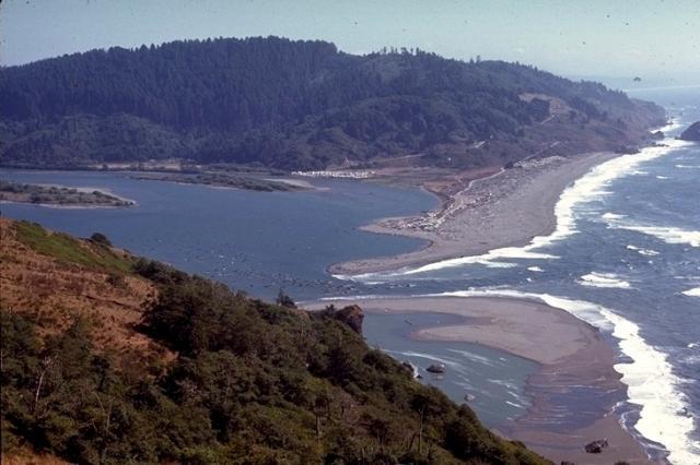 Redwood, 9340