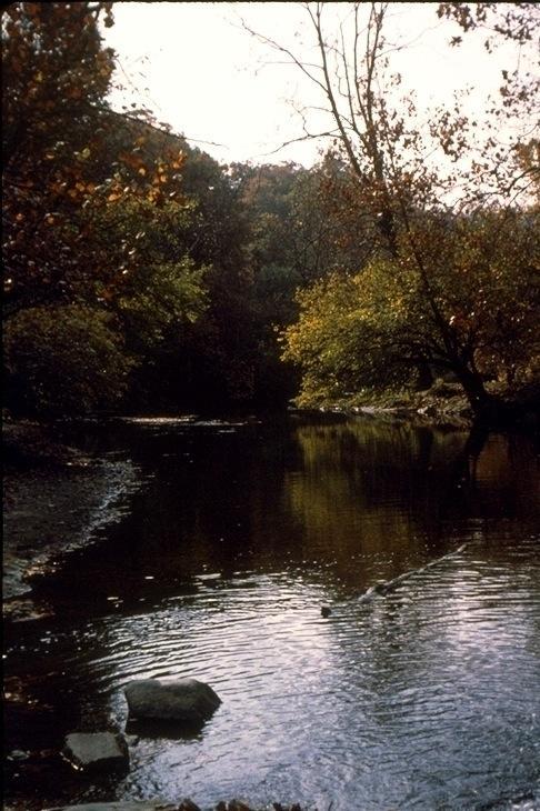 Rock Creek, 3224