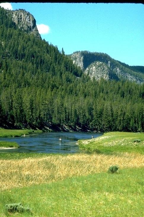 Yellowstone, 9537