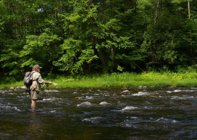Fly Fishing at Jamaica State Park