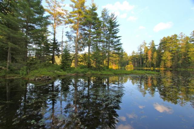 Lowell Lake reflections