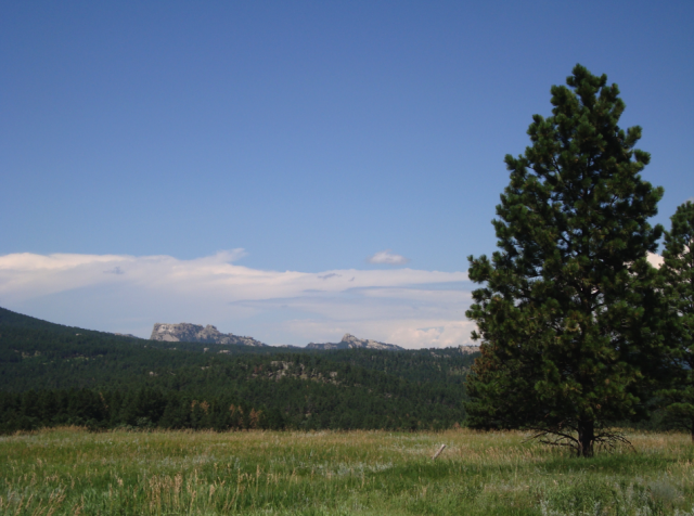 View of Mount Rushmore from the Peter Norbeck Scenic Byway