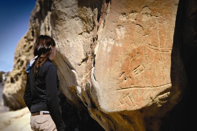 Visitor views Sandstone Carvings at White Mountain Petroglyphs