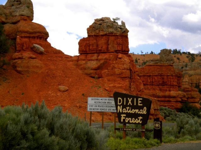 Best Park Sign Location
