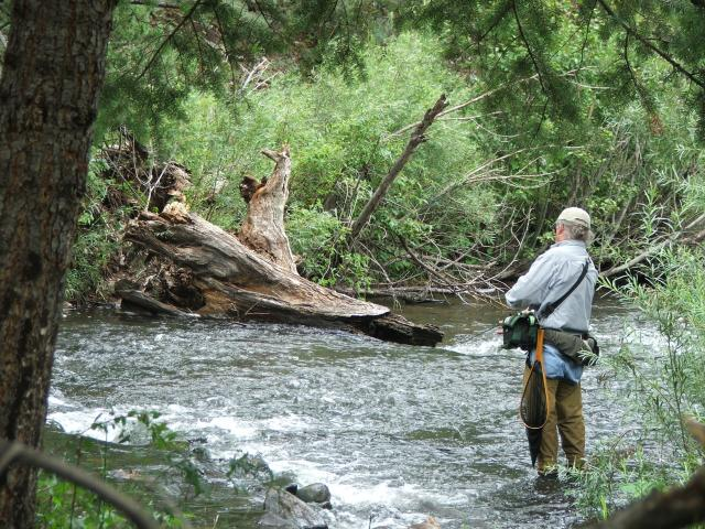 Fly fishing cimarron canyon nm oh ranger for Trout fishing new mexico map