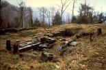Allegheny Portage Railroad : Allegheny Portage Railroad, 0278