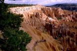 Bryce Canyon : Bryce Canyon, 0642