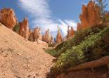 Bryce Canyon : Hoodoos Hill