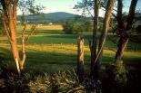 Catoctin Mountain : Catoctin Mountain, 4770