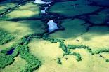 Everglades : Everglades, 3281