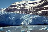 Glacier Bay : Glacier Bay, 4361