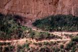 Grand Canyon : Grand Canyon, 4237