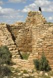 Hovenweep : Ruins and Ravin