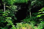 Russell Cave : Russell Cave, 9323