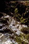 Timpanogos Cave : Timpanogos Cave, 2274