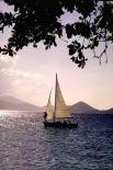 Virgin Islands Park : Virgin Islands Park, 3246