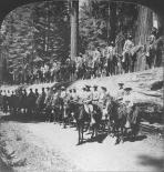 Yosemite : Buffalo Soldiers in Mariposa Grove