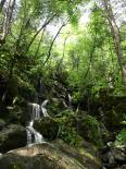 Smoky Mountains : Smoky's Waterfall