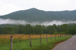 Smoky Mountains : Cades Cove - Early Morning
