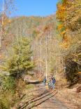 Cherokee Nat'l Forest : Biking the Virginia Creeper Trail Near Cherokee National Forest