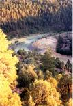 Heron Lake (NM) : Fall Colors at the Lake