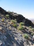 Oliver Lee Memorial (NM) : Hillside view