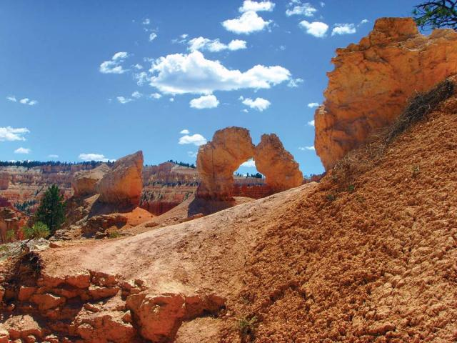 Bryce Arches