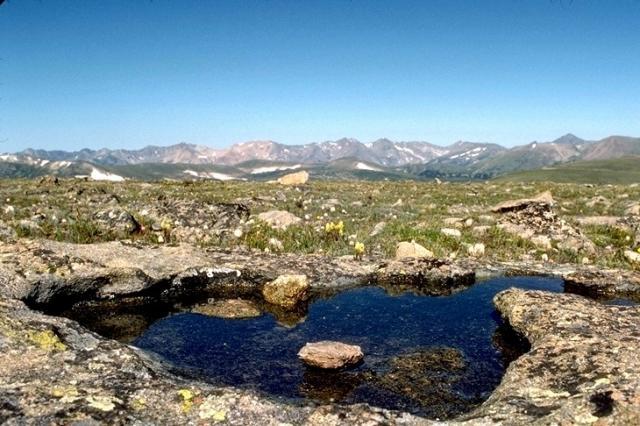 Rocky Mountain, 9006