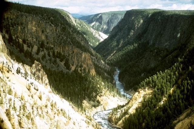 Yellowstone, 9536