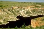 Bighorn Canyon : Bighorn Canyon, 0616