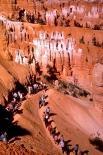 Bryce Canyon : Bryce Canyon, 0656