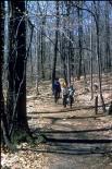 Catoctin Mountain : Catoctin Mountain, 1209