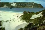 Channel Islands : Channel Islands, 8065