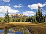 North Cascades : Washington Pass Marsh