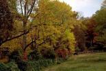 Rock Creek : Rock Creek, 2649