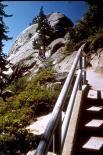 Sequoia & Kings Canyon : Sequoia & Kings Canyon, 2654